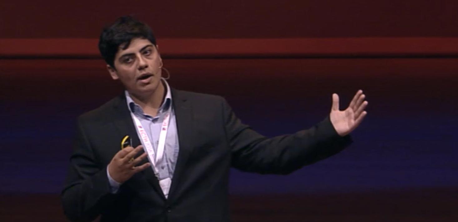 ECTH Gorelashvili PhD TED speaker